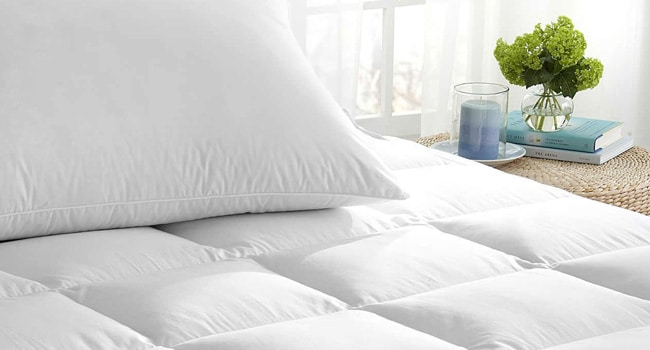 How does plant based memory foam pare to traditional