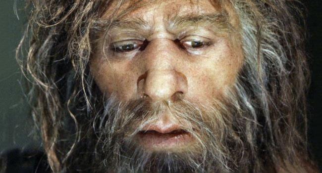 How Did Our Ancestors Sleep?
