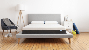 bear mattress with wood floor
