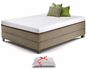 live and sleep mattress