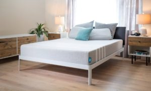 leesa mattress for back pain