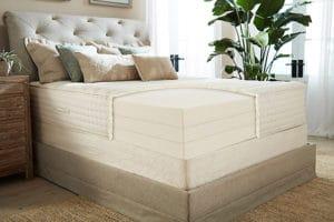 plushbeds latex mattress