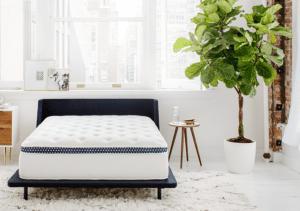 winkbeds mattress