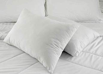 east coast down pillow