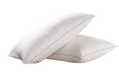 egyptian bedding goose pillow
