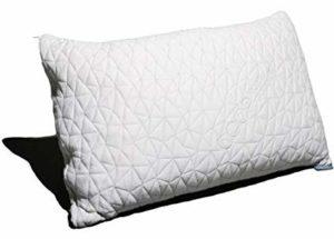 coop home goods pillow