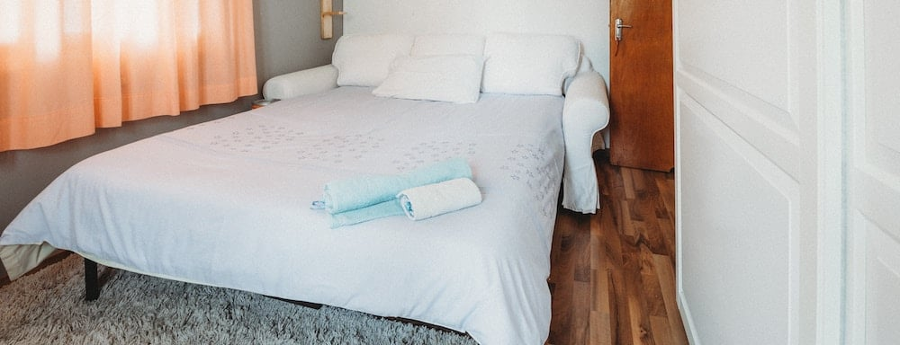 How To Get Rid Of Bed Bugs In A Mattress Sleep Junkie