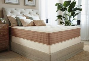 eco terra latex mattress