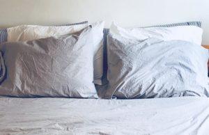 Alterra Pure Organic Cotton Sheet Set